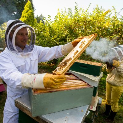 Krista Conner and James O'Gorman of Microsoft work with the bee hives at the apiary at the Washington Arboretum on July 20, 2015. (Photography by Scott Eklund/Red Box Pictures)